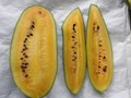 Bayer Launches Yellow Watermelon Variety in India