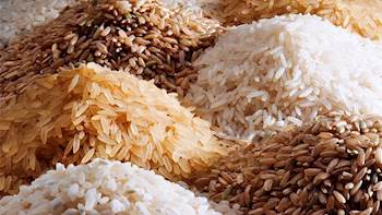 China lifts restrictions on import of non-basmati rice from India