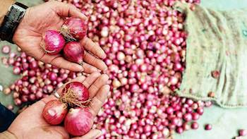 Onion Supply to be increased in Delhi