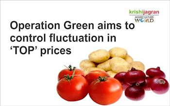 Operation Green aims to control fluctuation in 'TOP' prices