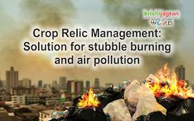Crop Relic Management: Solution for stubble burning and air  pollution