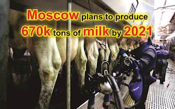 Moscow plans to produce 670k tons of milk by 2021