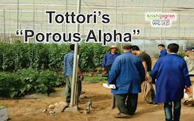 "From Waste to Wonder: Tottori's ""Porous Alpha"""