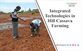 Integrated technologies in Hill Cassava Farming: Impact on Tribal Lives