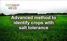 Advanced method to identify crops with salt tolerance
