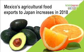 Mexico's agricultural food exports to Japan increases in 2018