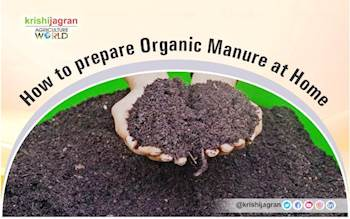 How to prepare Organic Manure at Home