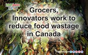 Grocers, Innovators in Canada work to save $31 billion in Food from being dumped each year