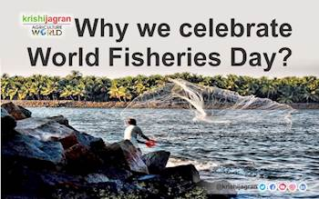 Why we celebrate World Fisheries Day?