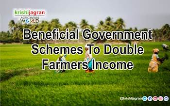 Beneficial Government Schemes to Double Farmers' Income