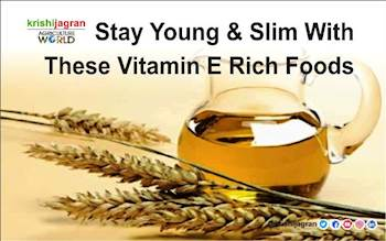 Stay Young & Slim With These Vitamin E Rich Foods