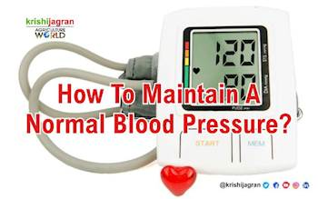 How to Maintain a Normal Blood Pressure?