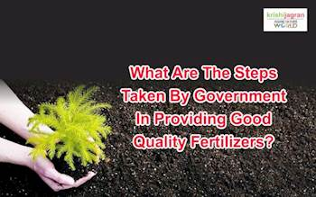 What are the Steps Taken by Government in Providing Good Quality Fertilizers?
