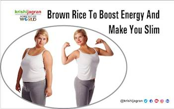 Brown Rice to Boost Energy and Make You Slim