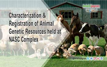 Characterization & Registration of Animal Genetic Resources held at NASC Complex
