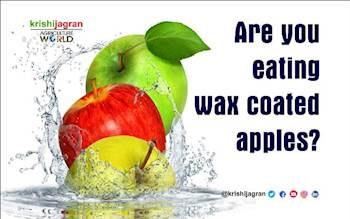 Be Careful before Eating Apples as they may be Wax Coated