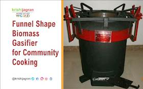 Funnel Shape Biomass Gasifier for Community Cooking