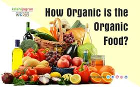 How Organic is the Organic Food?