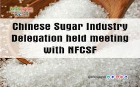 Chinese Sugar Industry Delegation held meeting with NFCSF