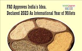FAO Approves India's Idea, Declared 2023 As International Year of Millets