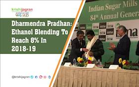 Dharmendra Pradhan: Ethanol Blending To Reach 8% In 2018-19