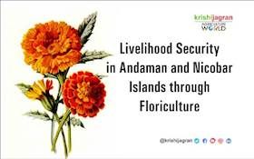Livelihood Security in Andaman and Nicobar Islands through Floriculture