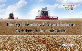 How Agri Universities & Research Institutes Are Helping In Farm Cultivation?