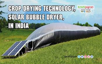 Crop Drying Technology, Solar Bubble Dryer, in India