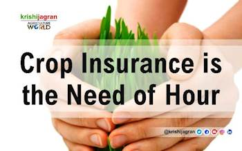 Crop Insurance is the Need of Hour