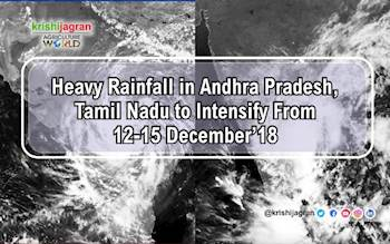 Weather Warning: Heavy Rainfall in Andhra Pradesh, Tamil Nadu to Intensify From 12-15 December'18