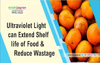 Ultraviolet Light can Extend Shelf life of Food & Reduce Wastage