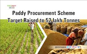 Paddy Procurement Scheme Target Raised to 52 lakh Tonnes