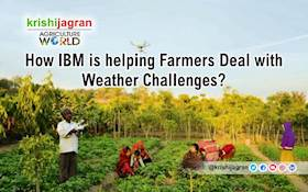 How IBM is helping Farmers Deal with Weather Challenges?