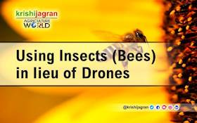 Using Insects (Bees) in lieu of Drones