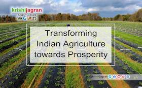 Transforming Indian Agriculture towards Prosperity