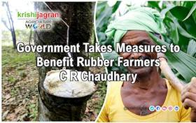 Government Takes Measures to Benefit Rubber Farmers: C R Chaudhary