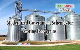 Modernized Government Schemes for Storing Foodgrains
