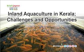 Inland Aquaculture in Kerala; Challenges and Opportunities
