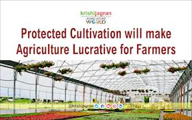 Protected Cultivation will make Agriculture Lucrative for Farmers