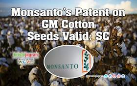 Monsanto's Patent on GM Cotton Seeds Valid: SC