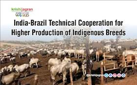 India-Brazil Technical Cooperation for Higher Production of Indigenous Breeds