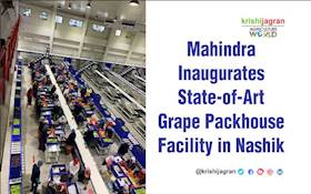 Mahindra Inaugurates State-of-Art Grape Packhouse Facility in Nashik
