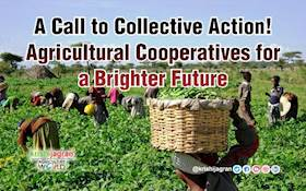 A Call to Collective Action! Agricultural Cooperatives for a Brighter Future