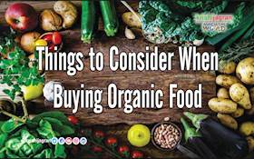 Things to Consider When Buying Organic Food