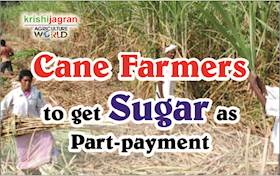 Cane Farmers to get Sugar as Part-payment