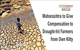 Maharashtra to Give Compensation to Drought-hit Farmers from Own Kitty