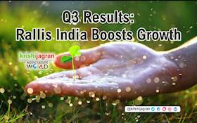 Q3 Results: Rallis India Boosts Growth
