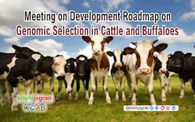 Meeting on Development Roadmap on Genomic Selection in Cattle and Buffaloes