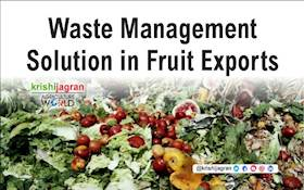 Waste Management Solution in Fruit Exports