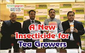 IIL Launches a New Insecticide for the Tea Growers of North-East India
